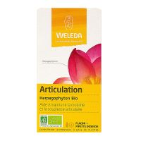 Articulation 60ml